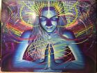 "VISIONARY ART POSTER 18x24"", Fractal/Spiral, Chakra, like Alex Grey, Luke Brown"