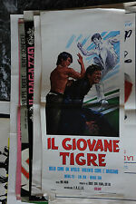 LOCANDINA CINEMATOGRAFICA CM 33 - IL GIOVANE TIGRE