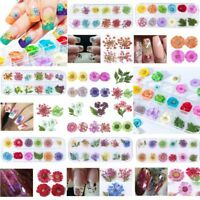 12 Color Real Dried Flower Leaves 3D UV Gel Acrylic Nail DIY Art Tips Decoration