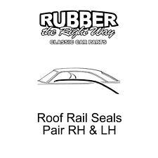 1966 1967 Ford Fairlane Roof Rail Seals - Pair - 2 Door Hardtop