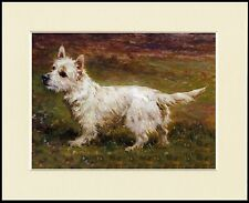 WESTIE WEST HIGHLAND WHITE TERRIER CUTE LITTLE PRINT