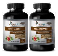 antiaging pills - KIDNEY SUPPORT - cinnamon - 2 Bottles (120 Capsules)