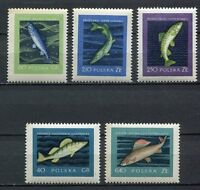 35649) POLAND 1958 MNH** Fish 5v Scott# 810/14