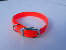 "TERRIER, WHIPPET Dog Collar 16""x3/4""  - Hunting, Hound, Fox, Pig dog, Pet ORANGE"