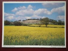POSTCARD ESSEX BRENTWOOD - VIEW OVER A RAPE FIELD