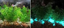 Large Aqua GLOW IN THE DARK Rubble ~ 16oz ~ Aquariums * Fish Tank Gravel ~ Stone