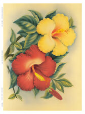 Hawaiian Hibiscus Art Poster Print by Eve Hawaii, 9x12