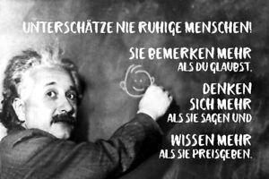 Albert Einstein Tafel Spruch 49 Blechschild Schild gewölbt Tin Sign 20 x 30 cm