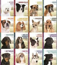 Artículos de color principal multicolor para perros