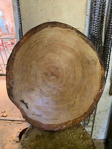 Baumscheibe, Holzscheibe,45x5 cm, Eiche, geschliffen, geölt