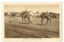 AFRIQUE , DJIBOUTI , RETOUR EN BROUSSE