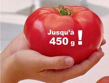 graines de tomate beef master  vendu en sachet de 30 graines