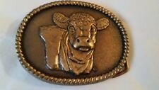 """""""Rare"""" Safe-Guard Limited Edition Solid Brass Belt Buckle 3.25 x 2.50"""