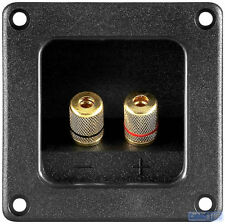 2 WAY SPEAKER WIRE / BANANA PLUG TERMINAL WALL PANEL PLATE WITH GOLD BRASS CAPS