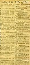 Newspaper Ads Mixed Classifieds 500 Pigeons Butcher Lots Sale Austin Texas 1887