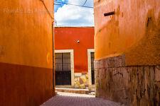 "Rhonda Dubin Photo, ""Oranges"" Guanajuato, Mexico, 13x19"" large print"