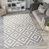 Large Floor Mat Carpet Rugs Area Mat Bedroom Living Room Anti-Slip 120cm x 160cm