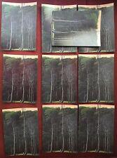 Tomas Sanchez.  10 Postcards  Cuban Latin American Artist Arte Cuba Pintura  Art