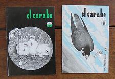 El Cárabo (La hulotte) el Halcón peregrino - Pierre DEOM