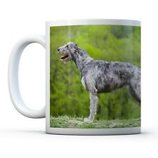 Giant Irish Wolfhound - Drinks Mug Cup Kitchen Birthday Office Fun Gift #12572