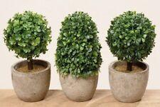 Künstliche Grün-Pflanze im Topf 3er Set - H 14 cm Kunstpflanze