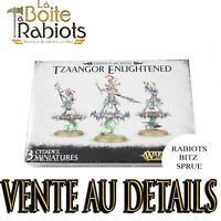 Warhammer Age of Sigmar Disciples of Tzeentch Tzaangor Skyfires/Enlightened