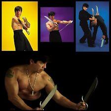 Wing Chun Gung Fu Complete Series (28 DVD Set) featuring Sifu Randy Williams