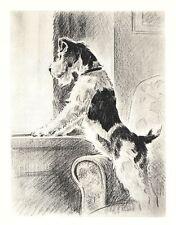 """Wire Fox Terrier - Dog Art Print - M. Dennis """"N"""""""