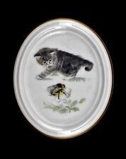 Porzellan Medaillon Wandbild Katze mit Hummel Kämmer Thüringen 9988139