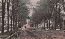 Constantine Michigan~Washington Street Homes~Horse Drawn Carriage~Dirt Road~1908