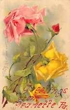 Jeannette Pennsylvania Roses Klein Artist Signed Antique Postcard J47119