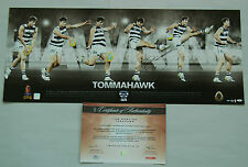 TOM HAWKINS HAND SIGNED TOMAHAWK GEELONG CATS AFL LIMITED EDITION PRINT OFFICIAL