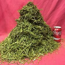 ALFALFA GRASS 1 KG Healthy Treat Forage Hi Fibre Vitamins Lucerne Chlorophyll