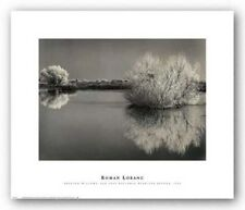 LAKE ART PRINT Frosted Willows Roman Loranc