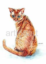 "Devon Rex Cat Aceo Card Print by A Borcuk 2.5""x3.5"""