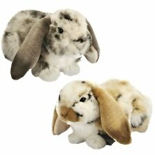 30cm Dutch Lop Eared Rabbit -Sold Individually in Asstd Colours - Plush/Easter