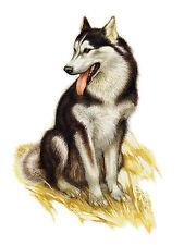 Alaskan Malamute Great Vintage Style Dog Print Poster