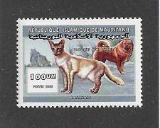 Dog Body Art Study Portrait Postage Stamp Tibetan Mastiff Mauritania 2000 Mnh