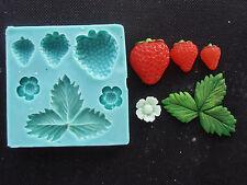 Silicone Mould STRAWBERRIES Sugarcraft Cake Decorating Fondant / fimo mold