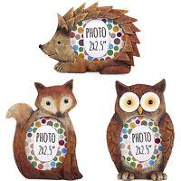Mini Wildlife Nature Animal Photo Picture Frame Nursery Room - Owl Fox Hedgehog