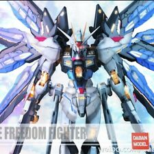 1/100 MG Strike Freedom Gundam MB [US SELLER] DABAN