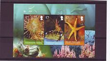 ASCENSION - SGMS1186 2013 M/S 3v MNH MARINE SURVEY JOINT ISSUE