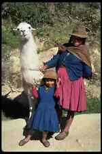 481082 Woman Child And Llama Near Cuzco Peru A4 Photo Print
