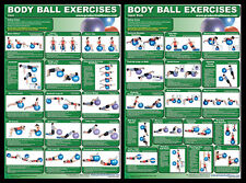 BODY BALL EXERCISES Professional Fitness Gym Workout Wall Charts 2 POSTER SET
