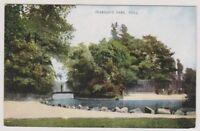 Yorkshire (East) postcard - Pearson's Park, Hull (A65)
