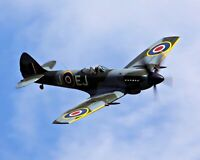 Lifetime Quality Airplane . WWII British Spitfire in Flight. 11x14 Print
