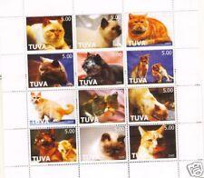 GATTI  - CATS TOUVA 2005 2