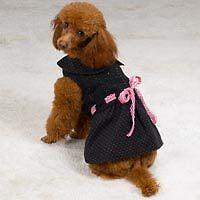Dog M LIL BELLA DRESS Party Clothes Pet Outfit Pet MEDIUM Black Pink Apparel
