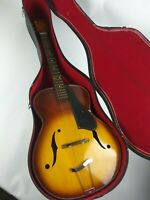 Vintage 60's DECCA Archtop Hollow Body Guitar with Original Case MINTY
