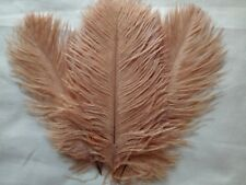 "5 pcs Ostrich Feathers Millinery & Crafts 6-8"" Coffee"